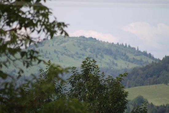 Chernivtsi Oblast, ยูเครน: Карпатские горы