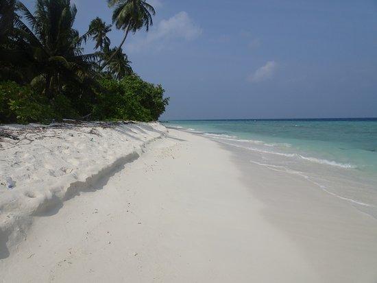 Nilandhe Inn: Plaża