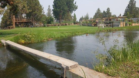 Rareloom Farm & Garden