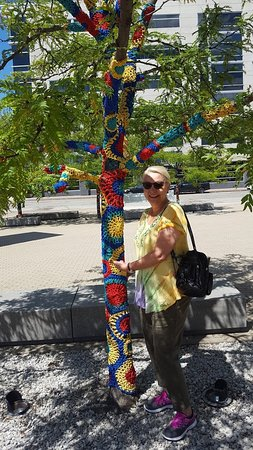 Figge Art Museum: They Even Have The Trees In Front Of The Museum With Artwork On Them