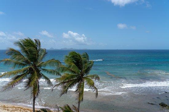 St. Patrick, Grenada: Beautiful views except for Sargassum