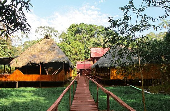 Cuyabeno Wildlife Reserve, Ecuador: Welcome to our huts...!!!