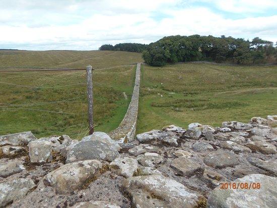 Haydon Bridge, UK: Hadrian's wall from the fort