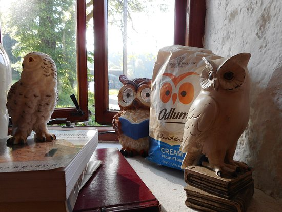 Did you know Odlums were the great flour millers of St Mullins