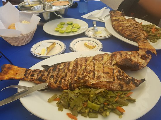 Au Coin des Artistes: Huge Grilled Red Snapper