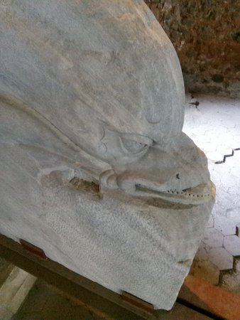 Parco Archeologico Greco Romano di Catania: IMG_20180816_170146_large.jpg