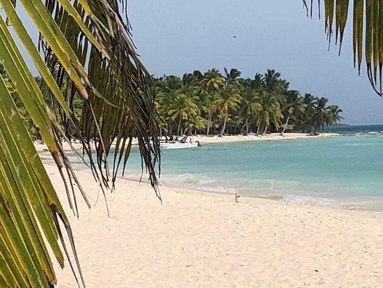 Bacardi Insel Dom Rep Karte.Ausflug Samana Bacardi Insel Los Haitises Rh Tours Bavaro