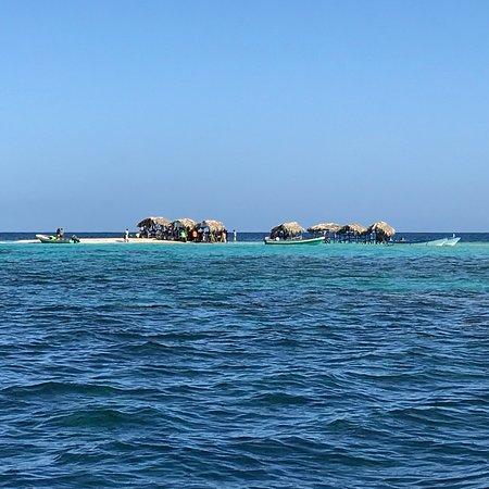 Paradise Island & The Mangroves (Cayo Arena): photo5.jpg