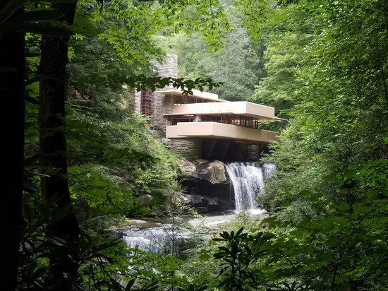 """Fallingwater: From the """"view"""", could have stayed here all day!"""