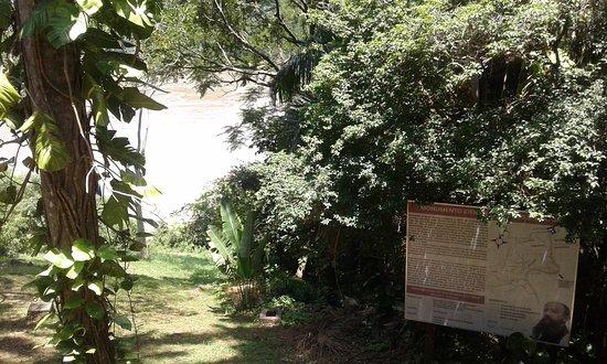 Monumento Cientifico Moises Bertoni