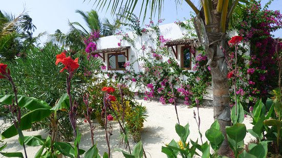 White Paradise Zanzibar: The cottages are a good distance from each other with pure white gravelled paths and lots of gre