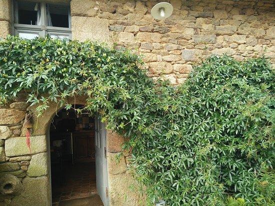 Plougonven, فرنسا: Passiflora