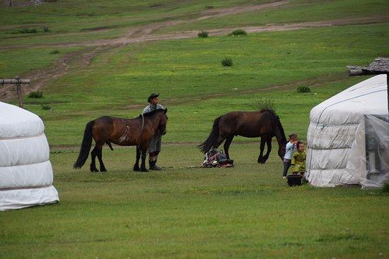 Arkhangai Province, Mongolei: Het dagelijkse leven van nomaden gade slaan.