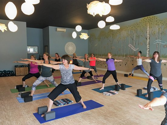 Sherwood, OR: Try our Vinyasa, Hatha, or other specialty classes to see which is your favorite yoga style