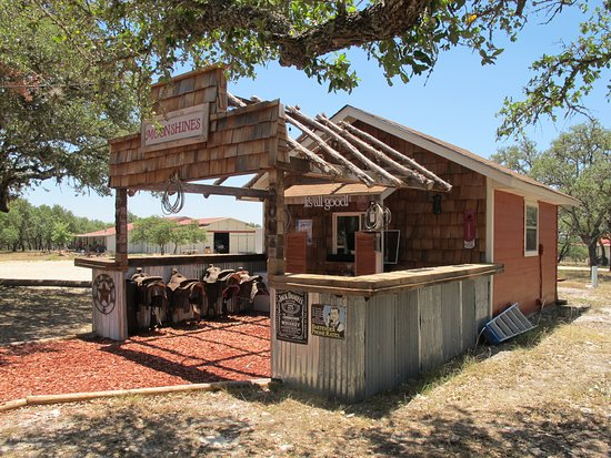 Mountain Home, TX: The saloon - you sat on saddles at the bar!