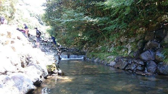 Omura Photo