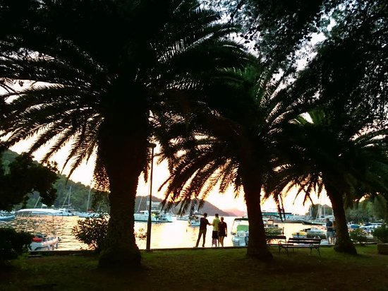 Sipan, Kroatien: La isla de las palmeras, Šipan