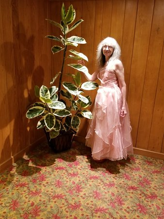 Wilson Lodge at Oglebay Resort & Conference Center: 20180708_215133_large.jpg