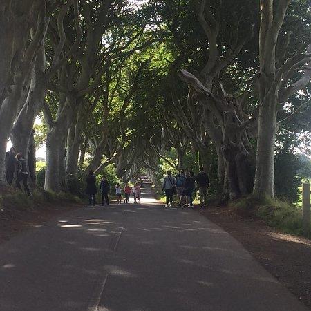 Irish Day Tours: photo3.jpg
