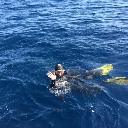 Orso Diving Club: photo7.jpg
