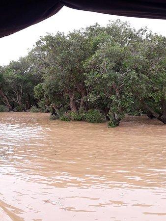 Baot Trips to visit Floating village Kompong .