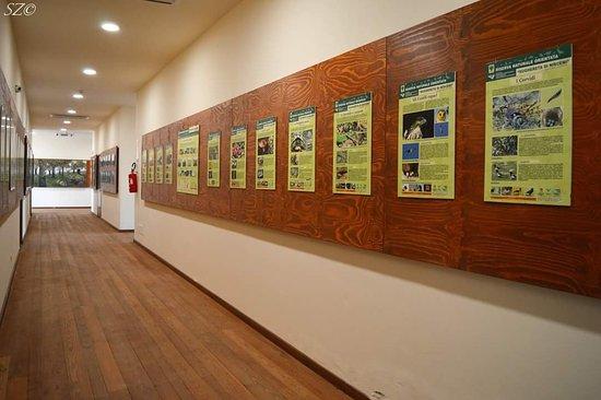 Museo Didattico di Storia Naturale
