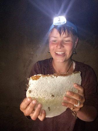 Bagmati Zone, Nepal: On site bee hives