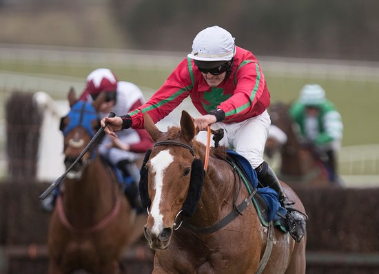 Patrickswell, Irland: Cappacurry Zak and Tyan Treacy winning a Novice Steeplechase in December 2017