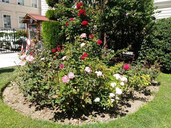 Sofia University Botanic Garden