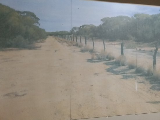 Rabbit proof  fence display in wubin  museum
