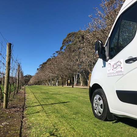 Mornington, Australia: We look forward to welcoming you onboard our brand new Renault Master Bus