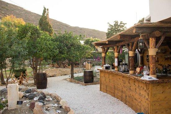 Amorgos Botanical Park