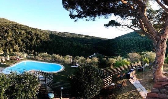 Quercianella, איטליה: Agriturismo La Mignola              •   L'ora perfetta per un aperitivo sotto al pino secolare