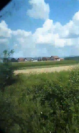 Pozega - Velika  train