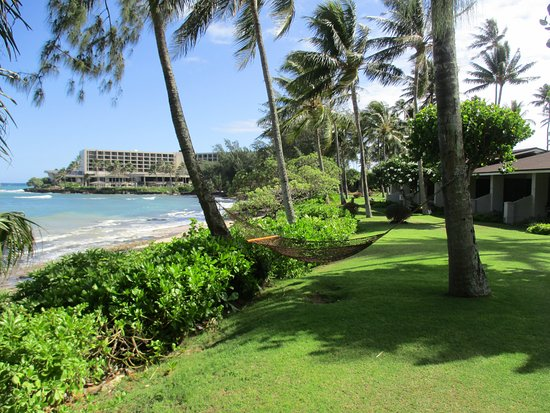 front of beach cottages 4 per building picture of turtle bay rh tripadvisor co za