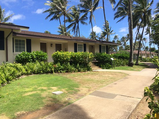 front of beach cottages 4 per building picture of turtle bay rh tripadvisor com