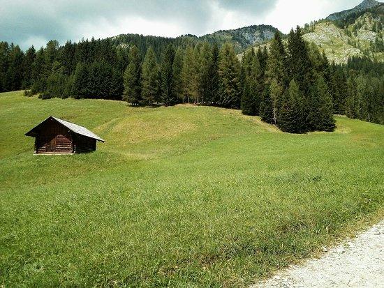 Sentiero Naturalistico Miravalle - Sappada