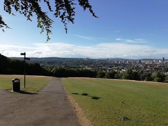Meersbrook Park: another view