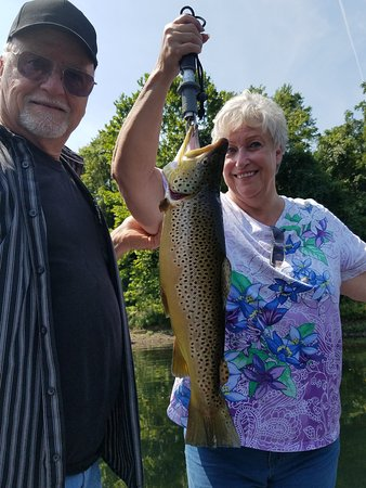Taneycomo Lake Trophy Brown Trout