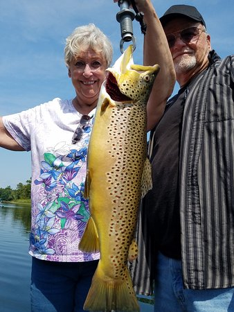 Taneycomo Lake Trophy Brown Trout