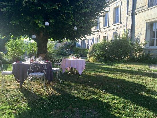 Beaumont-en-Veron, France : Under the beautiful Tilleul tree in the garden