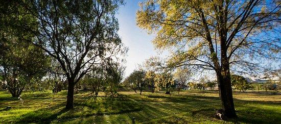 Jardin Botanico Univeristario BUAP
