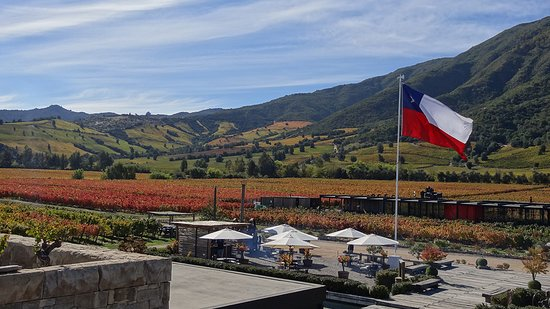 Santa Cruz, Chile: Montes Winery Fall 2018