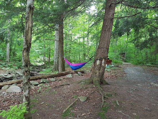 Andes, NY: hike-in site
