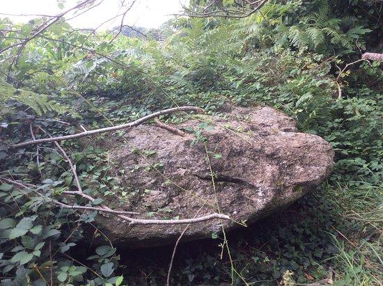 Poullan-sur-Mer, Франция: Encore une grosse pierre parmi la végétation