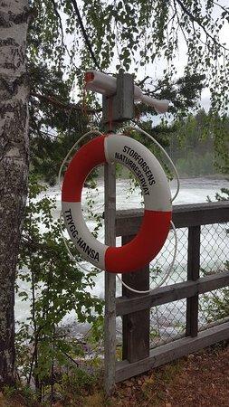 Norrbotten County, Swedia: 20180816_185913_large.jpg
