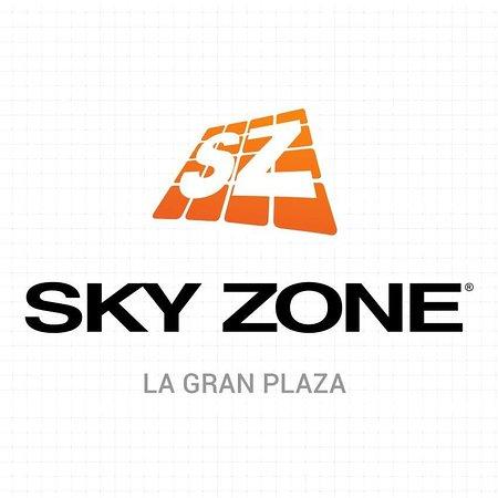 Sky Zone La Gran Plaza