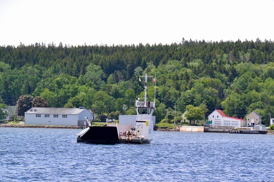 Lahave Ferry: Crossing the channel