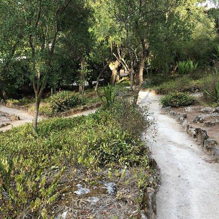 Marechal Carmona Park: City park Carmina