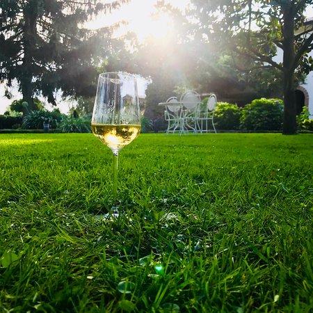 Riardo, Италия: Vino buono e tranquillità.